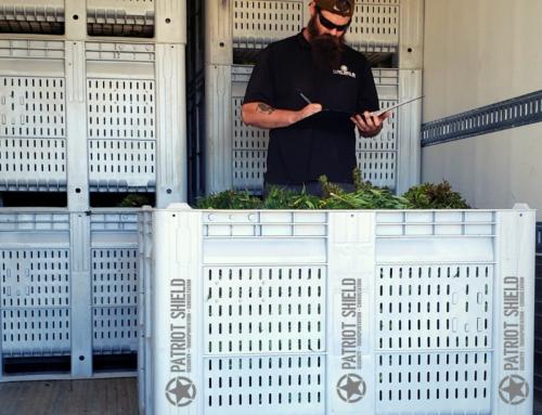 Moving Green: Cannabis and Hemp Transportation